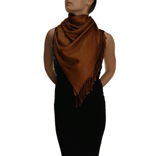 chocolate pashmina ladies scarves wrap shawl (3)